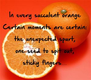 Succulent Orange